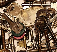 So Many Keys, So Many Lives by SquarePeg