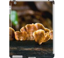 Butterscotch Ripple iPad Case/Skin