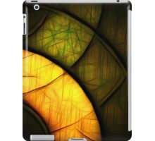 Stained Web iPad Case/Skin