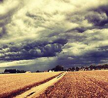 Van Gogh's field by Beau Williams