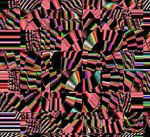 The Zebra Puzzle by Deborah Lazarus