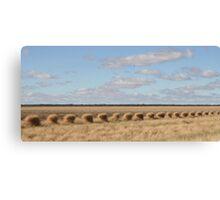 wind+grass+fence Canvas Print