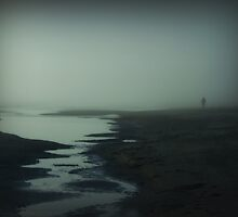 Into the Mist by Paula McManus