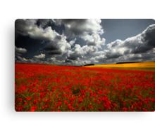 Norfolk Poppy Fields Canvas Print