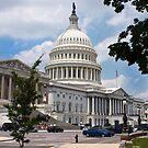 Capitol Hill by Nicholas Jermy