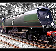 Biggin Hill Steam loco by Gordon Holmes