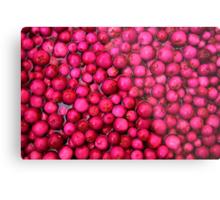 Australian Lilly Pilly Berries Metal Print