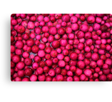 Australian Lilly Pilly Berries Canvas Print