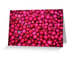 Australian Lilly Pilly Berries Greeting Card