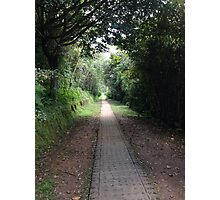 New path everyday - Colombia Photographic Print