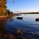 Carlo Point, Rainbow Beach at sunset. Queensland, Australia. (2) by Ralph de Zilva