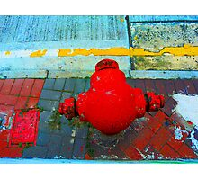 Red Hydrant Head Photographic Print
