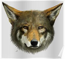 Wolf face Poster