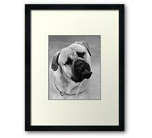 BORIS Framed Print