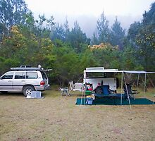 Campsite, Bendethera, Deua National Park, NSW by Richard  Windeyer