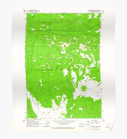 USGS Topo Map Oregon Foreman Point 279916 1962 24000 Poster