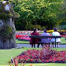 Relaxing in the Park by Chris Goodwin