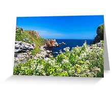 white spring on the coast Greeting Card