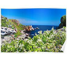 white spring on the coast Poster