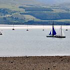 Boat Race at Midday by Toots2