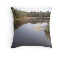 pond medow park Throw Pillow
