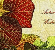 Autumn Wishes  by Selina Ryles