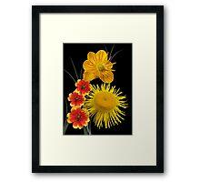 Golden colours Framed Print