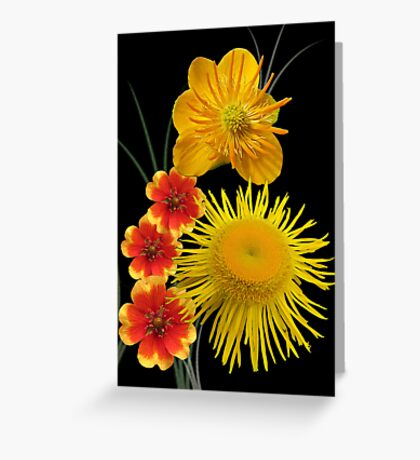 Golden colours Greeting Card
