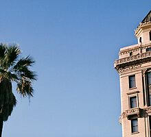 Vertical Objects - Sacramento by Mason Hershenow