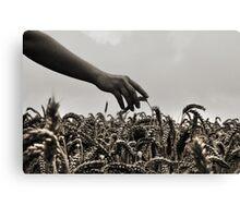 Streicheln der Weizen Canvas Print