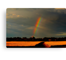 Rainbow over wheat fields, Low Coniscliffe, England ( 2 FT) Canvas Print