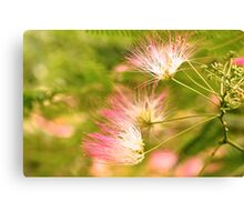 Nature's Paint Brush Canvas Print