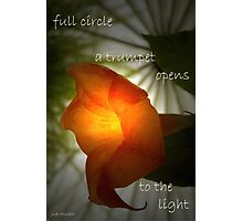 Full Circle Photographic Print