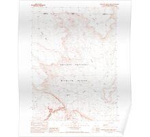 USGS Topo Map Nevada Thousand Creek Gorge 320308 1990 24000 Poster