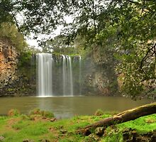 Dangar Falls Framed By Log & Tree by Michael Matthews