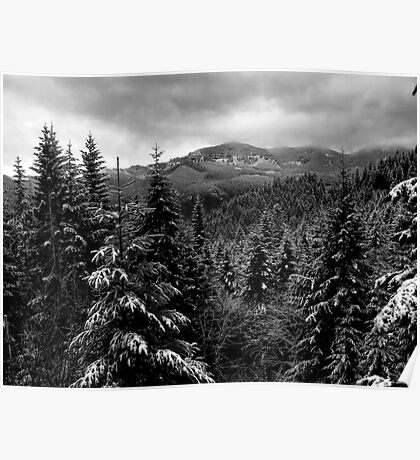 Snow In The Cascades ~ Oregon High Casacades ~ Poster