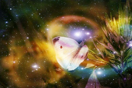 Butterfly Dreams  (please read description) by autumnwind