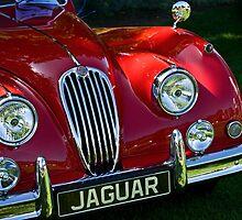Classic Jaguar XK 140 by Celeste Mookherjee