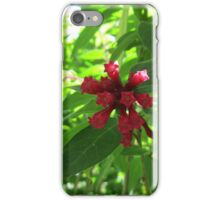 Red Plant iPhone Case/Skin