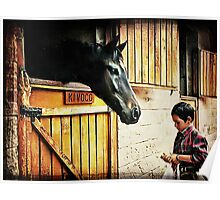 Feeding The Horse Poster