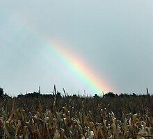 Rainbow Corn by Melody Ricketts