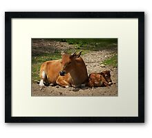 Mom and the baby Framed Print