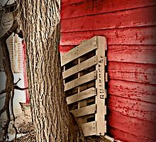 Side of a Barn (Sepia)  by Kimberly Darby