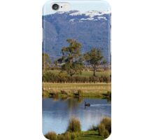 ~ The Swan & the Snow ~ iPhone Case/Skin