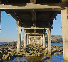Under the Bridge - La Perouse by Linda Fury