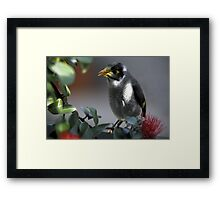 A Dash of Yellow Framed Print