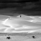 The Lost Dunes by Jill Fisher