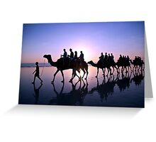 Camels in the Sunset Greeting Card