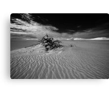 Desolate dunes, Australia Canvas Print