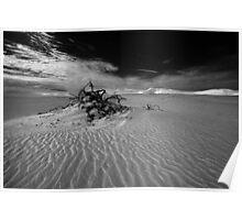 Desolate dunes, Australia Poster